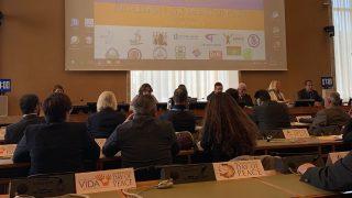 유엔 제네바 사무국과 국제 평화의 날: 박해받는 신종교는 어떻게 세계의 화합과 정의에 기여하는가