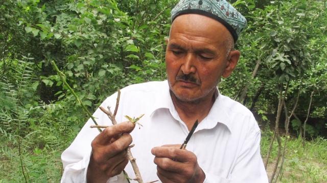 아지즈(Aziz)의 아버지, 이사 압둘라(Isa Abdullah)의 2006년 모습