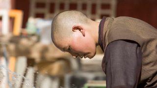 신장 교육캠프 강간 사건: 티베트에 선례가 있다
