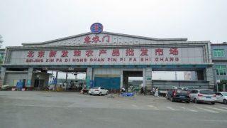 베이징에서 코로나바이러스 발발, 중국 공산당은 유럽 연어를 원인으로 지목