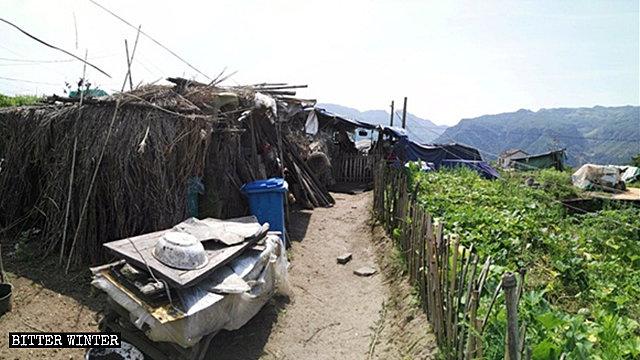 30여 명의 노인들이 살고 있는 한 대나무 헛간
