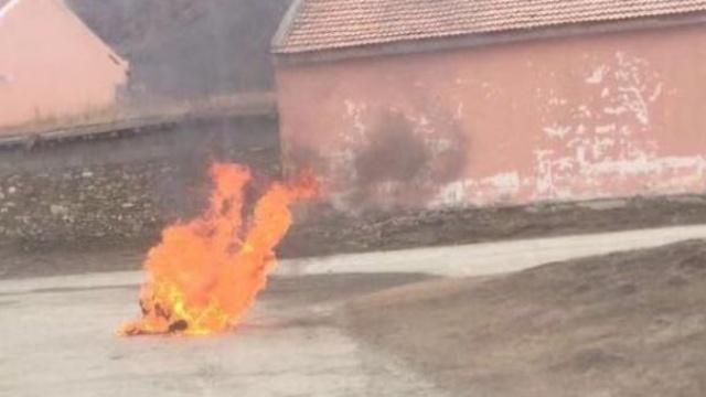 2019년 아바의 한 분신자
