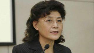 차이샤, 시진핑을 '마피아 두목'으로, 당을 '정치적 좀비'로 불렀다가 중국 공산당에서 축출